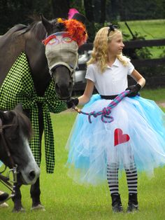 Horse and Rider Costume (Alice in Wonderland with Mad Hatter)