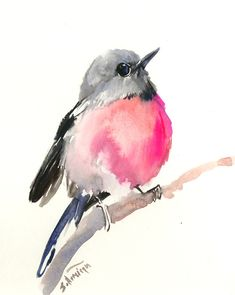 Pink Robin Bird 10 X 8 in original watercolor nursery art, pink gray, nursery children room, cute birds, pink bird by ORIGINALONLY on Etsy