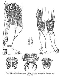 Fig. 104.—Maori tattooing. The puhoro on thighs, kauwae on chin, &c