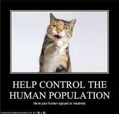 Help control the human population.