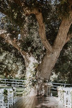 Garden Inspired Wedding at Circle Oak Ranch