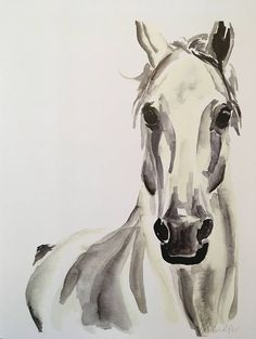 Your place to buy and sell all things handmade : White Horse Watercolor PRINT Watercolor Horse, Watercolor Artwork, Watercolor Animals, Watercolor Print, Elephant Watercolor, Watercolor Pencils, Painted Horses, Horse Drawings, Animal Drawings