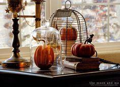 Pumpkins, fall, decorations