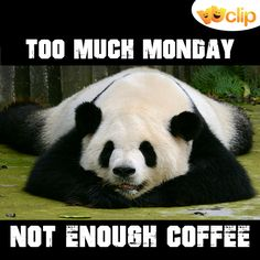Because #Monday demands more coffee than any other day!