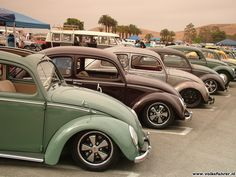 Google Image Result for http://www.volksfahrer.nl/copper18/albums/pictures/shows/usa08small/Classic/DSCF6401.jpg