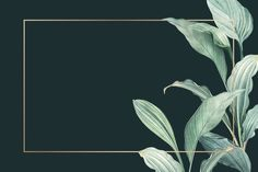 Discover thousands of copyright-free vectors. Graphic resources for personal and commercial use. Thousands of new files uploaded daily. Greenery Background, Dark Green Background, Tropical Background, Frame Background, Watercolor Background, Background Patterns, Vector Background, Backgrounds Free, Flower Backgrounds