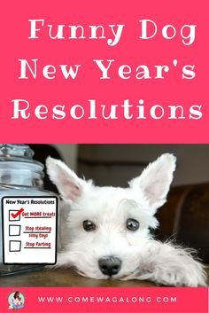 Funny Dog New Year�s Resolutions