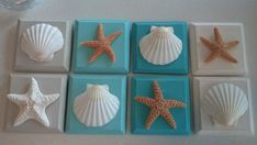 Beach Decor Seashell & Starfish Plaques by CathysCoastCreations, $8.50