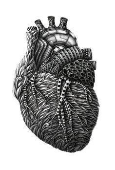 Anatomy (part 1) by Alex Konahin, via Behance