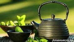 Yeşil Çayın Faydaları Nelerdir ? - http://www.bizkadinlaricin.com/yesil-cayin-faydalari-nelerdir.html  Yeşil çayın keşfedilmesi M.Ö. 3000 yıllarına dayandığı inanılır. Hikayeye göre bir yeşil çay yaprağı Çin imparatorununda önünde kaynayan suya düşmüş ve beğenilen tat bölgenin en meşhur içeceği olmuş. Günümüze kadar popülerliğini yitirmeyen yeşil çayın, gün geçtikçe bambaşka faydalarının olduğu ortaya çıkıyor.  Öncelikl