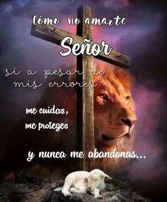 Lion, Animals, I Will Protect You, Leo, Animales, Animaux, Lions, Animal, Animais