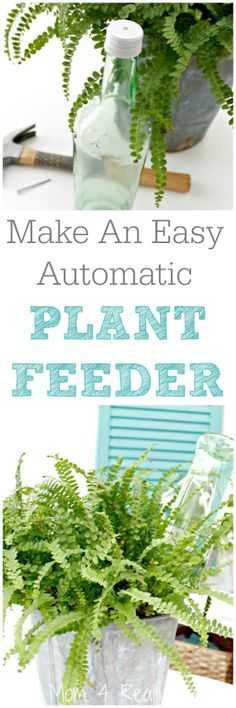 Make Your Own Automatic Plant Feeder In Minutes