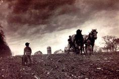 Hamilton County Iowa 1920 Old Tractors, Best Kept Secret, Draft Horses, Historical Pictures, Iowa, Hamilton, Memories, World, 1940s