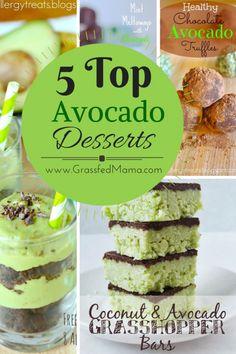 5 Top Avocado Dessert Recipes - Grassfed Mama