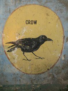 ...crow