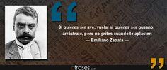 Si quieres ser ave, vuela, si quieres ser gusano, arrástrate, pero no grites cuando te aplasten — Emiliano Zapata