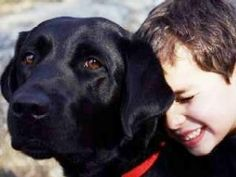 Guiding Eyes for the Blind - Guide Dog School Guide Dogs Excel in New Mission: Autism Pet Dogs, Dogs And Puppies, Doggies, Pets, Autistic Children, Children With Autism, Dog School, Animal Help, Special Kids