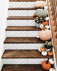 Fall and Halloween stairs staircase entryway decor decorations inspiration ideas. Fall inspiration and photo ideas. Things to do during fall. Fall Home Decor, Autumn Home, Herbst Bucket List, Seasonal Decor, Holiday Decor, Holiday Parties, My New Room, Stairways, Home Projects
