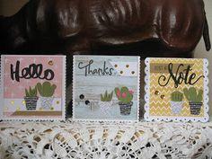 een berg kaartjes (en meer): cactussen en een ijsje