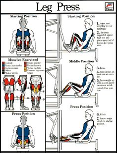 Leg Press-Lucky to have a home gym #leg presses-I am a little crazy about leg presses because they make me feel strong at 5x20.