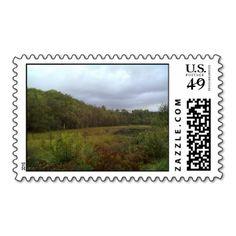 - #forest #stord #norway ziernor