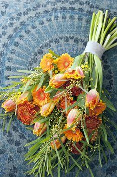 Die Gerbera steht in den Wochen 14 bis 18 im Blumenkalender   Blumenbüro