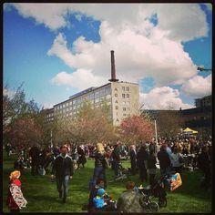 #Arabiankatufestivaalit #Helsinki #Streetfestival
