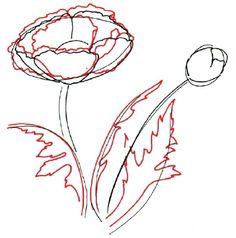 How to draw a poppy flower projects pinterest drawings how to draw a poppy flower projects pinterest drawings painting flowers and drawing sketches mightylinksfo