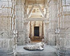 India Song Photography – Fubiz™