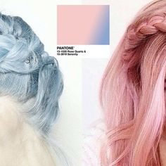 Rose Quartz & Serenity Colors in Use - New York Web Design Serenity Color, Rose Quartz Serenity, Web Design, Graphic Design, Manhattan New York, East Village, Fashion Colours, Fashion Accessories, Hair Color