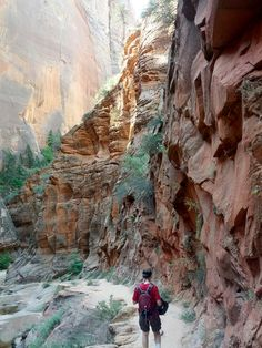 Is anything more inspiring than God's handiwork in the world around us? This gorgeous shot of Observation Point Trail in Utah's Zion National Park is the work of Susan Campbell Beachy.