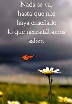 Nada se va hasta que nos haya enseñado lo que necesitábamos saber. More Than Words, Some Words, Wisdom Quotes, Me Quotes, Angst Quotes, Great Quotes, Inspirational Quotes, Motivational, Foto Transfer