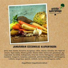Carrots, Vegetables, Food, Turmeric, Essen, Carrot, Vegetable Recipes, Meals, Yemek