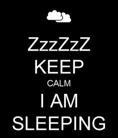 Imagen de http://sd.keepcalm-o-matic.co.uk/i/zzzzzz-keep-calm-i-am-sleeping.png.