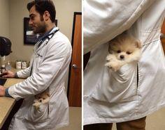 Сексуальный ветеринар покорил Интернет снимками с животными (30 фото)