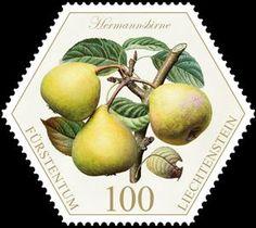 Liechtenstein postage stamp featuring pears - interesting shape