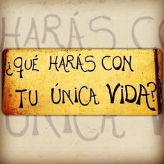 #Queharas #YOLO