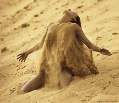 Alma Felina : Foto
