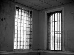 Blinds, Windows, Curtains, Home Decor, Sunroom Blinds, Insulated Curtains, Homemade Home Decor, Draping, Decoration Home