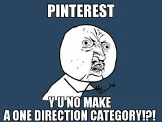 We should start a petition !! #1Dcategory Pin it on your most popular board so Pinterest can see it ! Come on Directioners are powerful , we can do it !