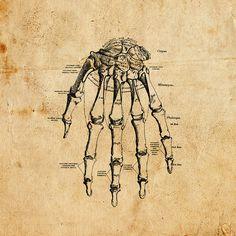 Digital Vintage Hand Vector