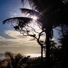 Aquelas coisas que só Deus explica...#clickdebethvalentim #brasil #caminho #prata#lugaresexóticos #magia #mar#instaRio #instagram #instaworld #gersbrasil #mundo#encantamento##peace #poraí #natureza #sensações #boanoite ⭐⭐⭐#maravilhasbeautiful