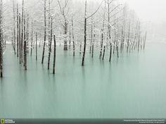 Frozen lake in Japan.