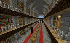 Amazing library! (with an Enderman. Yes yes it's a Minecraft library. Still amazing.)