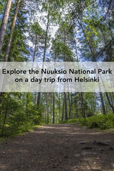 Taking a day trip from Helsinki to the Nuuksio National Park is a great way to relax and get in touch with nature. Would you like to find out why?