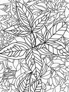 Adult Coloring Page - Leaves - Printable Instant Download #18 by ColourSerenity on Etsy