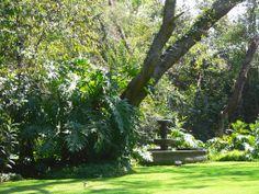 Luis Barragan's Casa Eduardo Prieto Lopez - garden