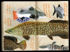 Sketch 2014 by Studio-Takeuma  , via Behance