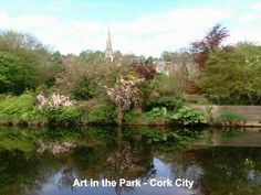 Art in the Park Fitzgerald Park Cork City 32 University College Cork, Art In The Park, Cork City, Chinese Martial Arts, My Photos, Illustration, Outdoor, Outdoors, Illustrations