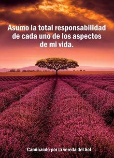 Deja de buscar culpables afuera y asume la responsabilidad de tus actos y decisiones!! CristinA